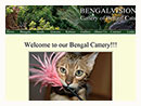 BengalVision Cattery of Bengal Cats